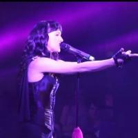 BWW TV: Watch Lena Hall, Robin De Jesus & More Tribute Prince at DEARLY BELOVED Concert!