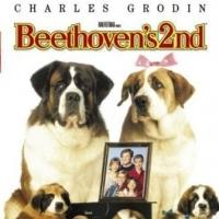 CSO to Present BEETHOVEN'S 2nd as Part of Friday Family Movie Night, 4/3