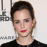 Fashion Photo of the Day 2/19/14 - Emma Watson