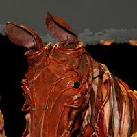 Photo Flash: Mary Berry Presents WAR HORSE's Joey with Poppy Bouquet