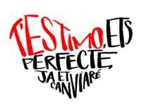 TEstimo-Ets-Perfecte-Ja-Et-Canviar-regresa-a-Barcelona-20130114