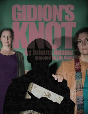 BWW Reviews: GIDION'S KNOT a Visceral, Fierce Look at Bullying and Child Suicide