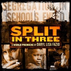 Florida Repertory Theatre's SPLIT IN THREE Begins 4/24