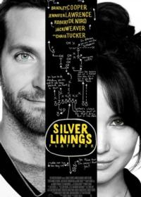 SILVER LININGS PLAYBOOK Will Not Open Nationwide 11/21