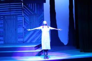 New Stage Theatre Announces 2014-2015 Season