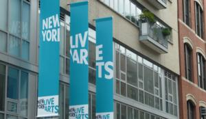 Ellen Robbins, ZviDance and More Headline New York Live Arts' 2014 THEATER ACCESS PROGRAM, Now thru 6/29