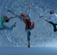 Motionhouse: Scattered Comes to the Van Wezel, 1/29