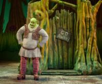 BWW-Reviews-Its-a-Big-Bright-Beautiful-World-With-SHREK-The-Musical-20010101