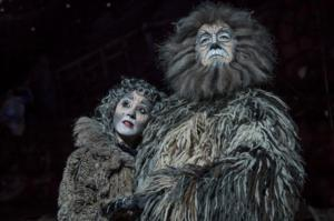 CATS Coming to Marlowe Theatre, 16-28 June