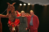 WAR HORSE Celebrates Fifth Anniversary In London