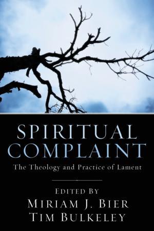 Miriam J. Bier & Tim Bulkeley Edit New Collection of Essays, SPIRITUAL COMPLAINT
