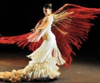 FOREVER FLAMENCO Returns to the Fountain Theatre, 2/10