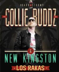 Collie Budz Plays the Fox Theatre, 11/9