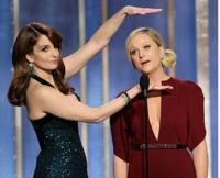 Tina-Fey-Says-No-Way-to-OSCAR-Hosting-Gig-20130227
