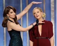 Tina-Fey-Says-No-Way-to-OSCAR-Hosting-Gig-20130227