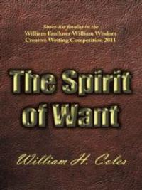 New Novel, THE SPIRIT OF WANT, Examines the Ethics of Lying