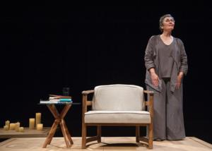 BWW Reviews: APT's Sarah Day Delivers Magnificent THE YEAR OF MAGICAL THINKING