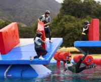 ABC's WIPEOUT Spikes to a 5-Week High in Season Finale