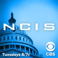 NCIS Hits Over 20M Viewers with Live+3 Ratings