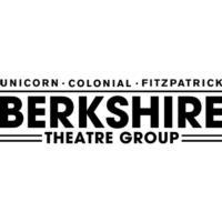 Alison Larkin to Appear at the Berkshire Festival of Women Writers, 3/9