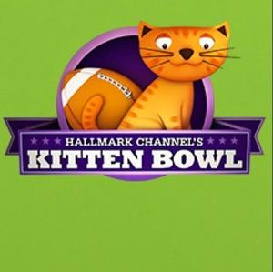 Hallmark Channel Rescues & Adopts 'Happy' for 2015 KITTEN BOWL II