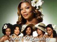 Lifetimes-STEEL-MAGNOLIAS-Set-for-57-DVD-Release-20130304