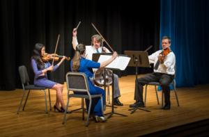 Delaware County Symphony to Perform at Neumann University, 4/6