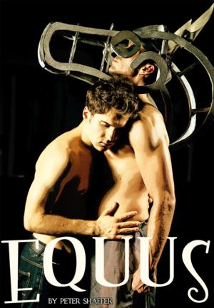 Long Beach Playhouse Interviews EQUUS Director Robert Craig; Show to Run 9/7-10/5