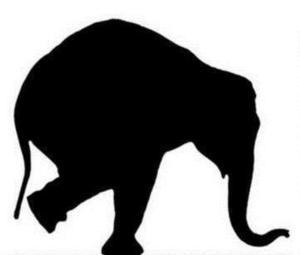 Stolen Elephant Theatre Presents Grae Cleugh's SCOTTISH WIDOWS, Now thru 24 May