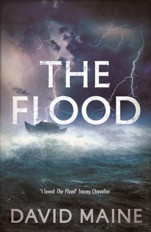 BWW Reviews: THE FLOOD Realistically Re-Imagines The Life and Times of Noah
