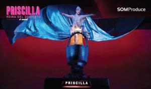 'Priscilla, Reina del Desierto' busca protagonistas para su estreno en Madrid en octubre