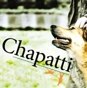 Northlight Theatre to Bring CHAPATTI to Galway Arts Festival, July 2014; Debuts in Chicago, March 7-April 13