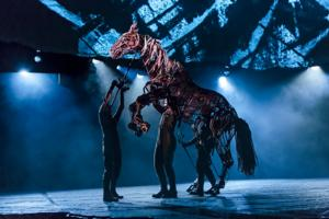 BWW Reviews: WAR HORSE Brings Heartwarming Tale to Nashville