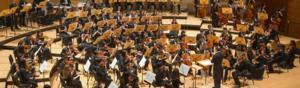 Pacific Symphony Youth Orchestra's Season Finale to Feature the 2013-14 Concerto Competition Winners, 5/11