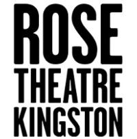 The Rose Theatre Kingston Announces Cast for THE VORTEX
