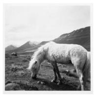 Silver Prints – Photography Exhibit by Tim Volk Coming to Soka University in CA February 4 - May 10