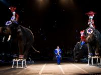 Interactive 2013 Zelzah Shrine Circus Brings New Line-up to the Orleans Arena, 1/10-13