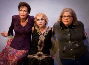 BWW Interview: Playwright Cyndi Williams on Austin Playhouse's World Premiere of ROARING