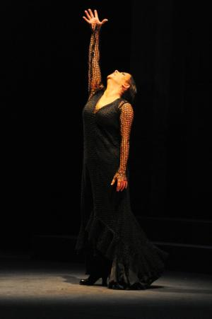 BWW Reviews: Eva Yerbabuena at 2014 Flamenco Festival