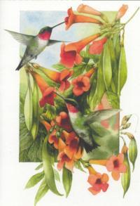 Artist-Marjolein-Bastin-to-Receive-GCAs-Lifetime-Achievement-Award-20010101