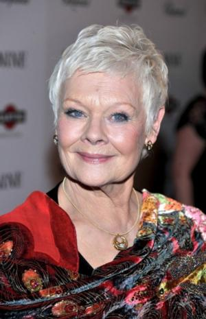 Judi Dench, Matthew Morrison & More Join Weinstein Company's TULIP FEVER