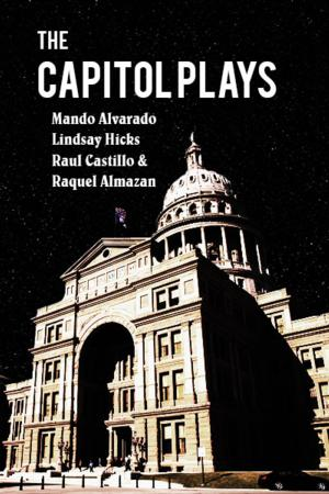 Lone Star Theatre Co to Stage Reading of Wendy Davis's THE CAPITOL PLAYS, 5/19