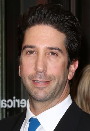 David Schwimmer to Lead ABC's Comedy Pilot IRREVERSIBLE