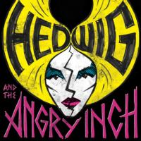 HEDWIG-AND-THE-ANGRY-INCH-Set-for-the-Drake-Underground-19-26-20010101