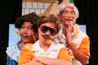 RAP'S HAWAII Comes to Honolulu Theatre for Youth, 1/11-26