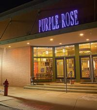 Purple Rose Conducts Economic Impact Study with Americans for the Arts