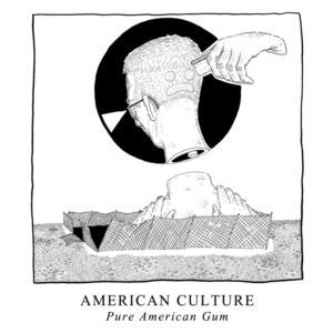 AMERICAN CULTURE to Release New Album 'Pure American Gum'