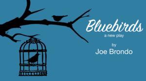 Premiere Reading of BLUEBIRDS by Joe Brondo Set for John Drew Theater, 9/9
