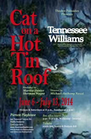 BWW Interviews: Director Michael-Anthony Nozzi on Presenting Tennessee Williams' Original CAT ON A HOT TIN ROOF Script