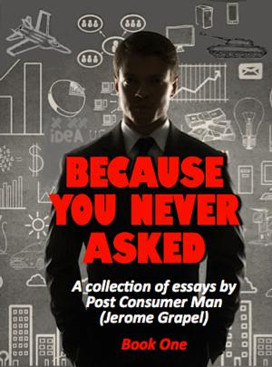 BECAUSE YOU NEVER ASKED by Jerome Grapel is Available Now
